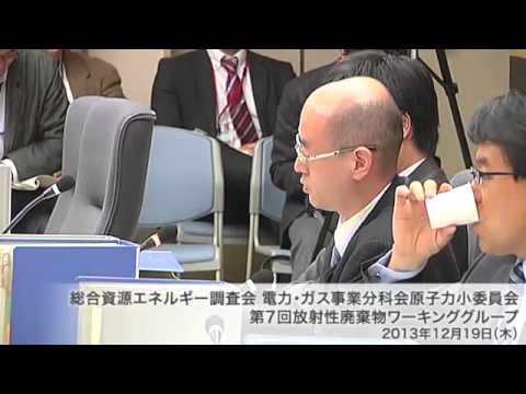 総合資源エネルギー調査会 電気事業分科会 原子力部会 放射性廃棄物ワーキンググループ(旧小委員会)(2013年度第9回)