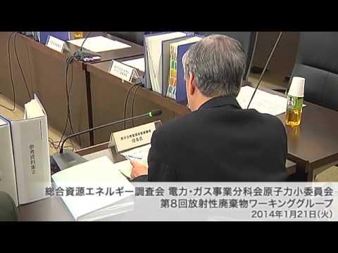 総合資源エネルギー調査会 電気事業分科会 原子力部会 放射性廃棄物ワーキンググループ(旧小委員会)(2013年度第10回)
