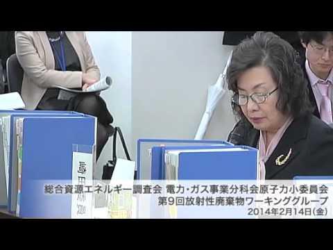 総合資源エネルギー調査会 電気事業分科会 原子力部会 放射性廃棄物ワーキンググループ(旧小委員会)(2013年度第11回)