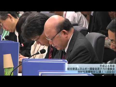 総合資源エネルギー調査会 電気事業分科会 原子力部会 放射性廃棄物ワーキンググループ(旧小委員会)(2013年度第13回)