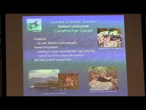 20140818 カンムリウミスズメと上関の生物多様性 -「奇跡の海」を未来の子どもたちへ-