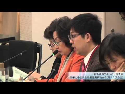 総合資源エネルギー調査会 電気事業分科会 原子力部会 放射性廃棄物ワーキンググループ(旧小委員会)(2013年度第17回)